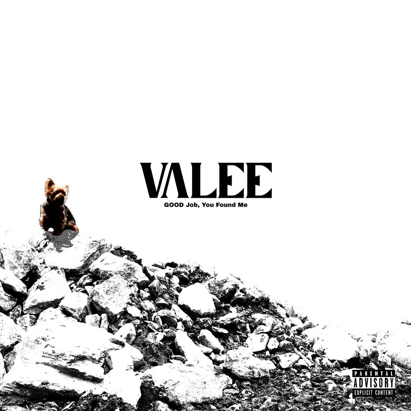 Valee - GOOD Job, You Found Me